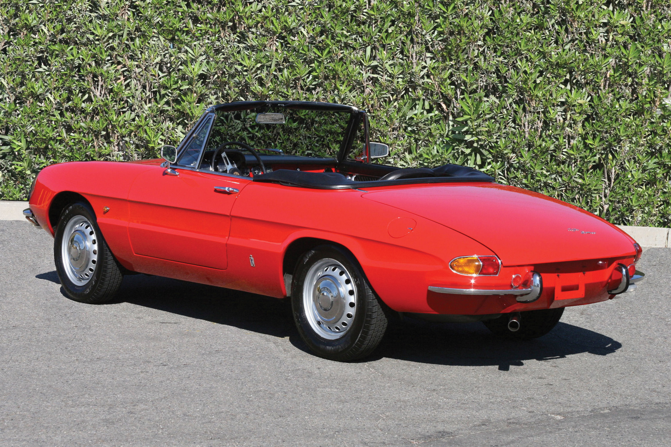 photo alfa romeo spider 1300 junior duetto cabriolet 1967. Black Bedroom Furniture Sets. Home Design Ideas