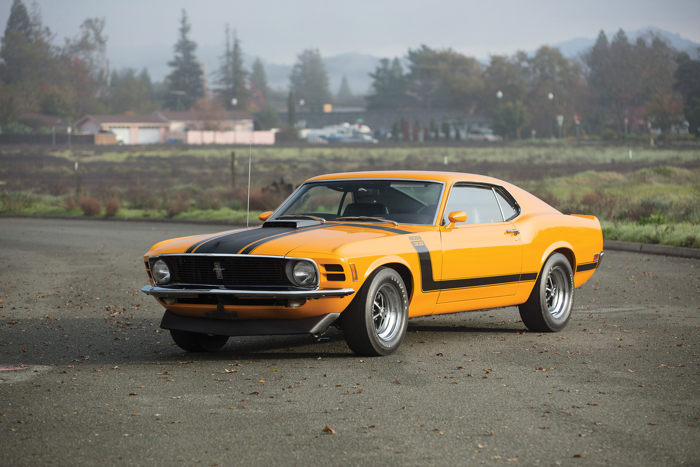 Photo Ford Mustang I 1964 73 Boss 302 Coup 1970