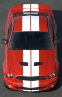 SHELBY MUSTANG GT500 coupé 2008