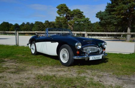 galerie photo AUSTIN HEALEY Mk3